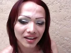 Feia Transsexual Shemale And Girl